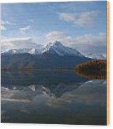 Mud Lake Reflection Wood Print