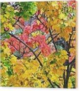 Multicolored Maple Wood Print