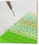Multiwell Sample Tray Wood Print