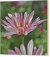Mum Is In The Pink Digital Painting Wood Print