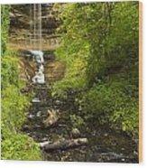 Munising Falls 1 Wood Print