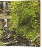 Munising Falls 3 Wood Print