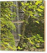 Munising Falls 4 Wood Print