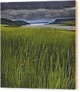Munlochy Bay Wood Print