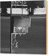 Murfreesboro Mailbox Wood Print