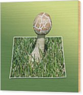 Mushroom 02 Wood Print