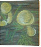 Mushrooms On A Hill Wood Print