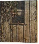 Musical Window Wood Print
