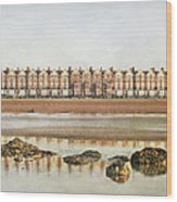 Mussel Encrusted Rocks Wood Print by larigan - Patricia Hamilton