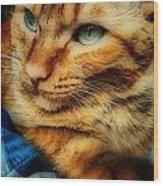 My Favorite Feline Wood Print