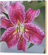 My Pink Lily Wood Print by Marilyn West