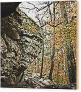 My Rock My Shelter Wood Print