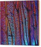 My Vegas Mandalay 4 Wood Print