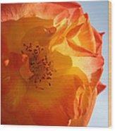 My Yellow Orange Rose Wood Print