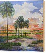 Myakka Sunset Wood Print