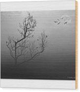 Myst-eerie-us Wood Print