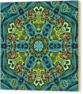 Mysteries 01  Wood Print