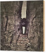 Mysterious Stairway Into A Canyon Wood Print