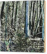Mystery Forest Wood Print by Olivier Le Queinec