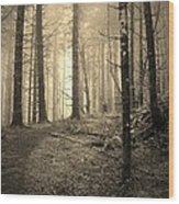 Mystery Path Wood Print