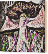 Mystic Mushrooms Wood Print by Corrie Knerr