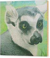 Mystic Seer Of Madagascar Wood Print