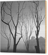 Mystic Trees 2 Wood Print