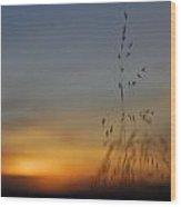 Mystical Calm Sunset Wood Print