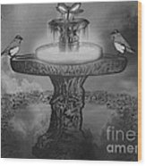 Mystical Garden Waterfountain Wood Print