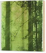 Mystical Glade Wood Print by Judi Bagwell