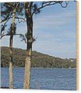 Myuna Bay Foreshore Wood Print