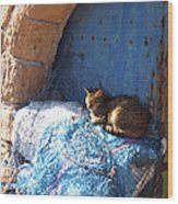 Nap After The Meal Wood Print