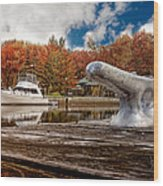 Napanee Harbour One Wood Print