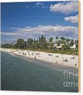 Naples Florida Wood Print