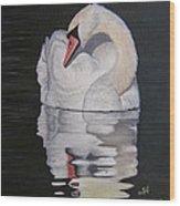 Napping Swan Wood Print