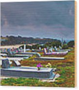 Narooma Cemetery Wood Print