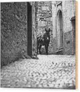 Narrow Street In Orvieto Italy Wood Print