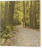 Narrow Way Wood Print by Gary Suddath
