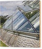 National Botanic Garden Wales Glasshouse Wood Print