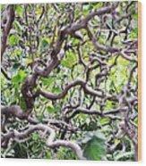 Natural Abstract 3 Wood Print