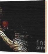 Natural Abstract 31 Wood Print
