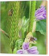Natural Bouquet Wood Print