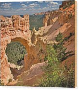 Natural Bridge In Bryce Canyon National Park Wood Print