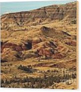Naturally Painted Hills Wood Print