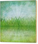 Nature And Grass On Paper Wood Print by Setsiri Silapasuwanchai