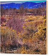Nature At It's Best In South Platte Park Wood Print