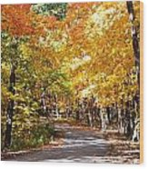 Nature Drive Wood Print