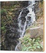 Nature Falls Wood Print