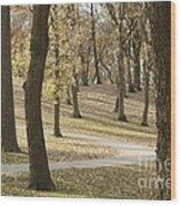 Nature Park Wood Print