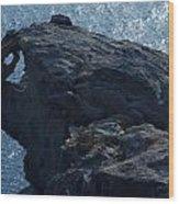 nature Protecter Santorini Island Wood Print